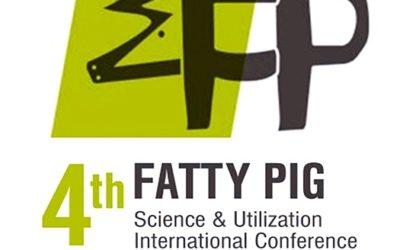 FATTY PIG 2017